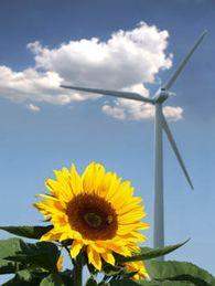 Abhilfe bei Stromschwankungen: Gas aus Wind