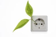 Erdgas von ENTEGA automatisch klimafreundlich