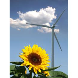 Kostenkontrolle: So viel Energie können Sie einsparen